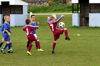 Under Sevens - Sunday Morning - 24/05/15